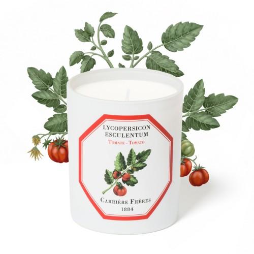 """Carriere Freres """"Tomato"""" žvakė"""